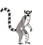 lemurs-in-different-poses-vector-2784956