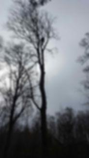 Topkapning Odsherred Holbæk Kalundborg Vestsjælland Sjællands Odde Vig Lyng Ellinge Asnæs Fårevejle Audebo Kongsted Rørvig Havnebyen Overby Yderby Ebbeløkke