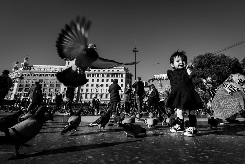 Fotos Nicolas Blaiotta (43).jpg