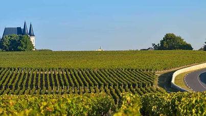 medoc-bordeaux-vins.jpg