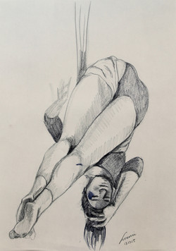 danza aerea 43