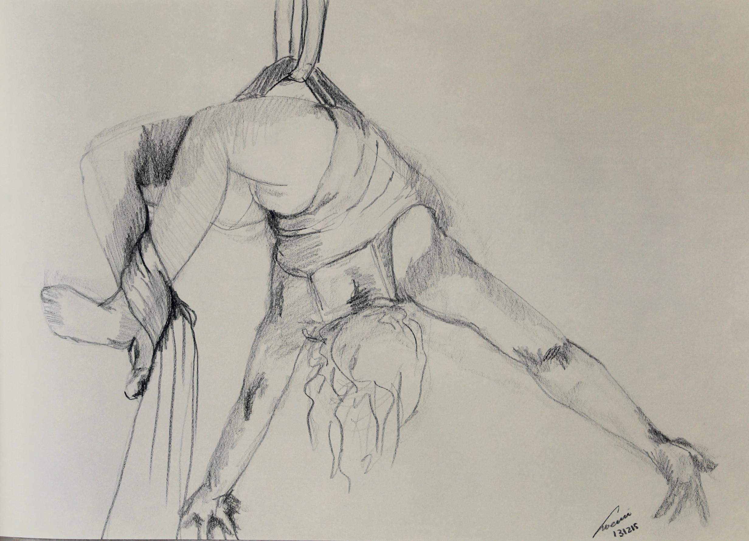 danza aerea 31