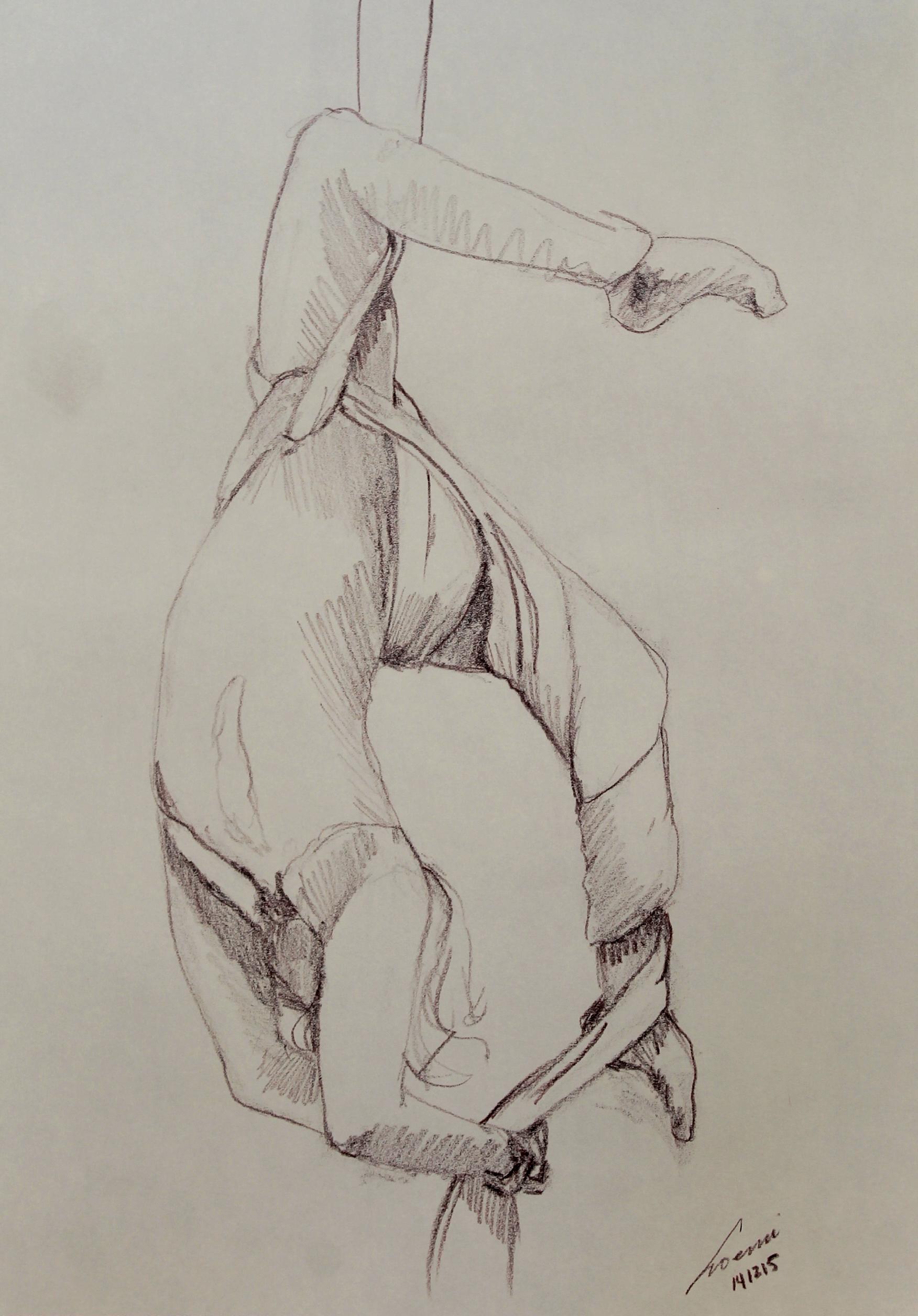 danza aerea 27