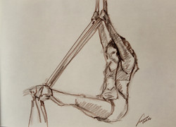 danza aerea 51