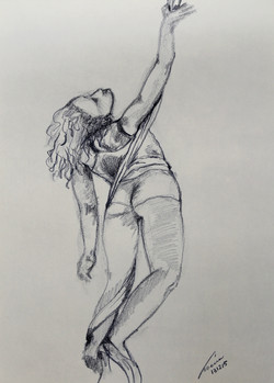 danza aerea 44