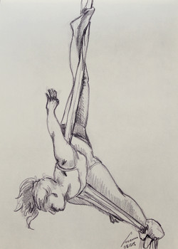 danza aerea 32