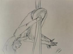 danza aerea 48