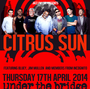 Under The Bridge 2014