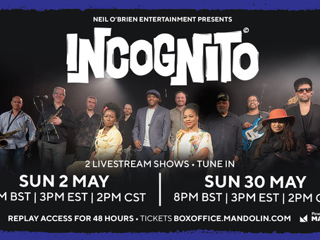 Incognito's First Ever Live Music Stream & Newsletters