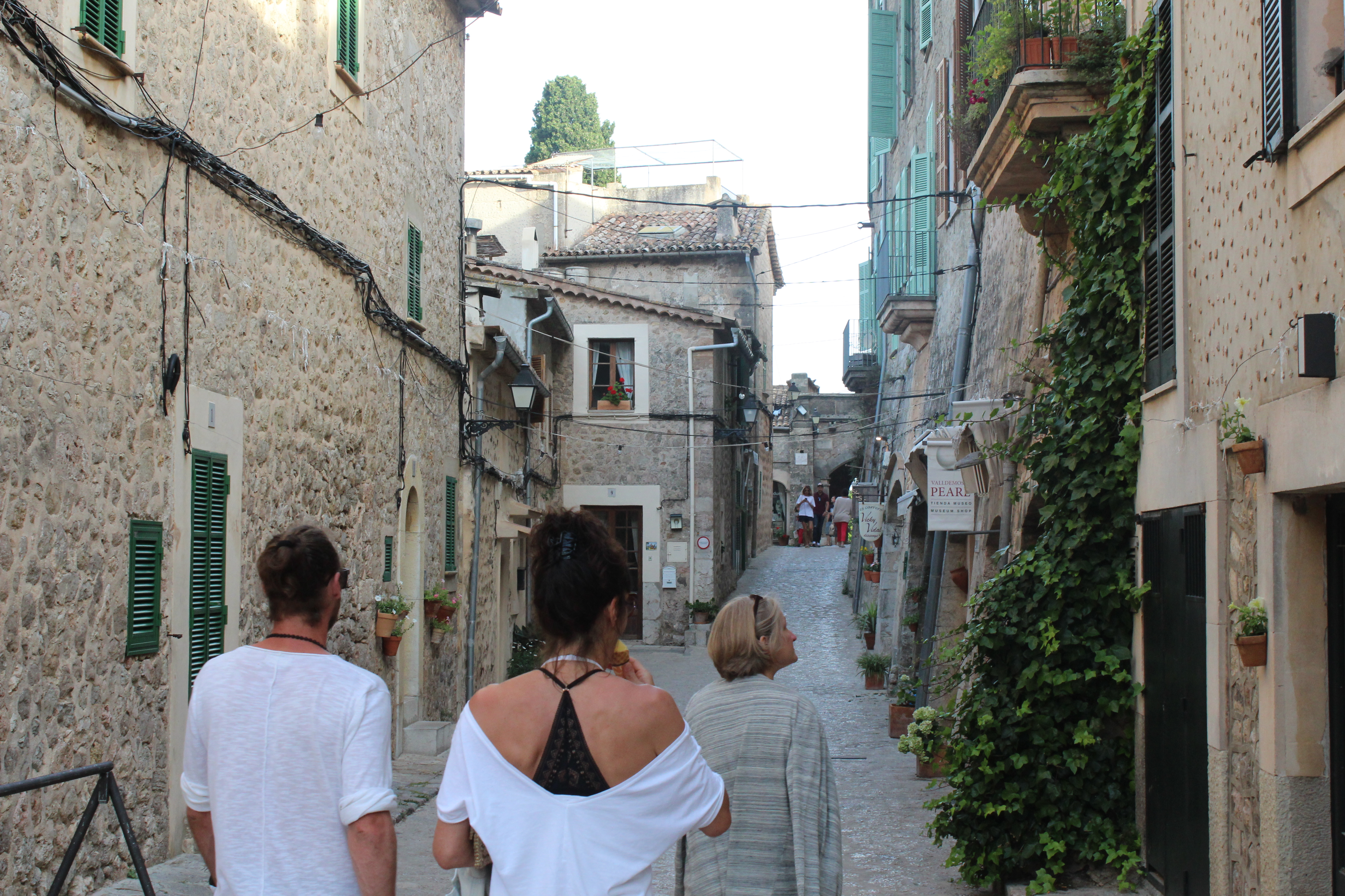 To see the beauty of Valldemossa