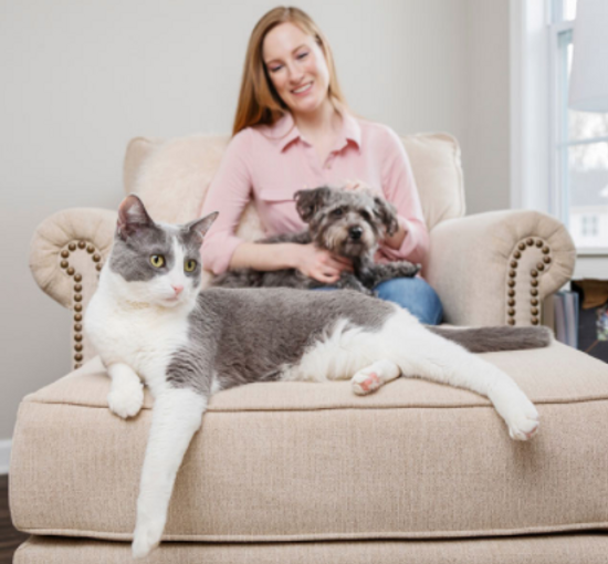 lady with a cat and a dog on a pink chair.png