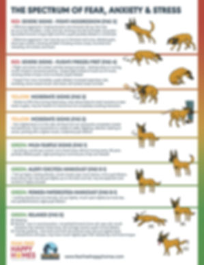 FAS-Ladder-Dog-Regular-Version-1_EDITED-