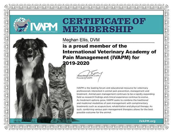 2019_IVAPM_practice certificate_FINAL .j