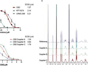 Cannabidiol Inhibits SARS-CoV-2 Replication and Promotes the Host Innate Immune Response