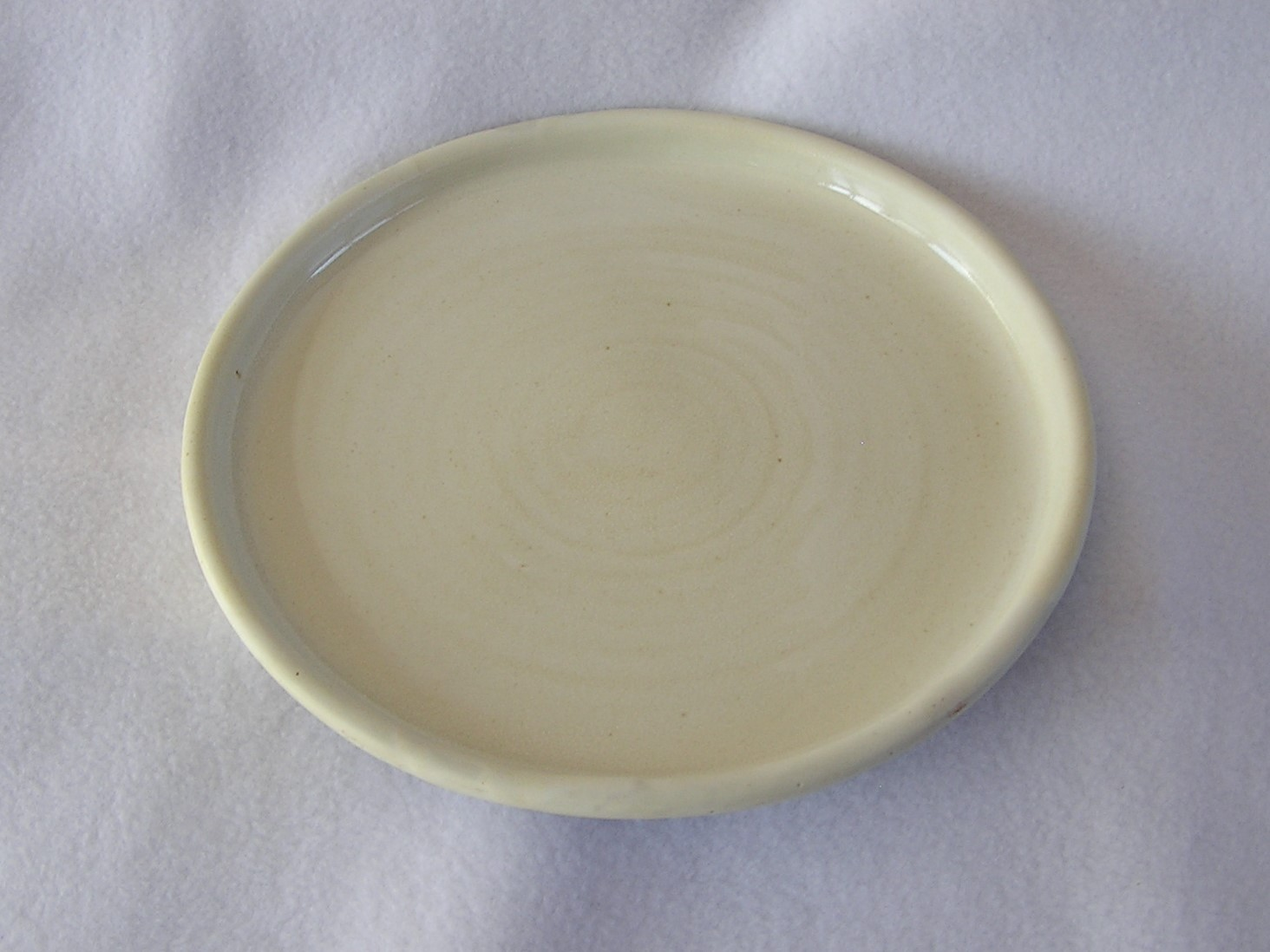 Plate- Pearl White 9 in ($20)