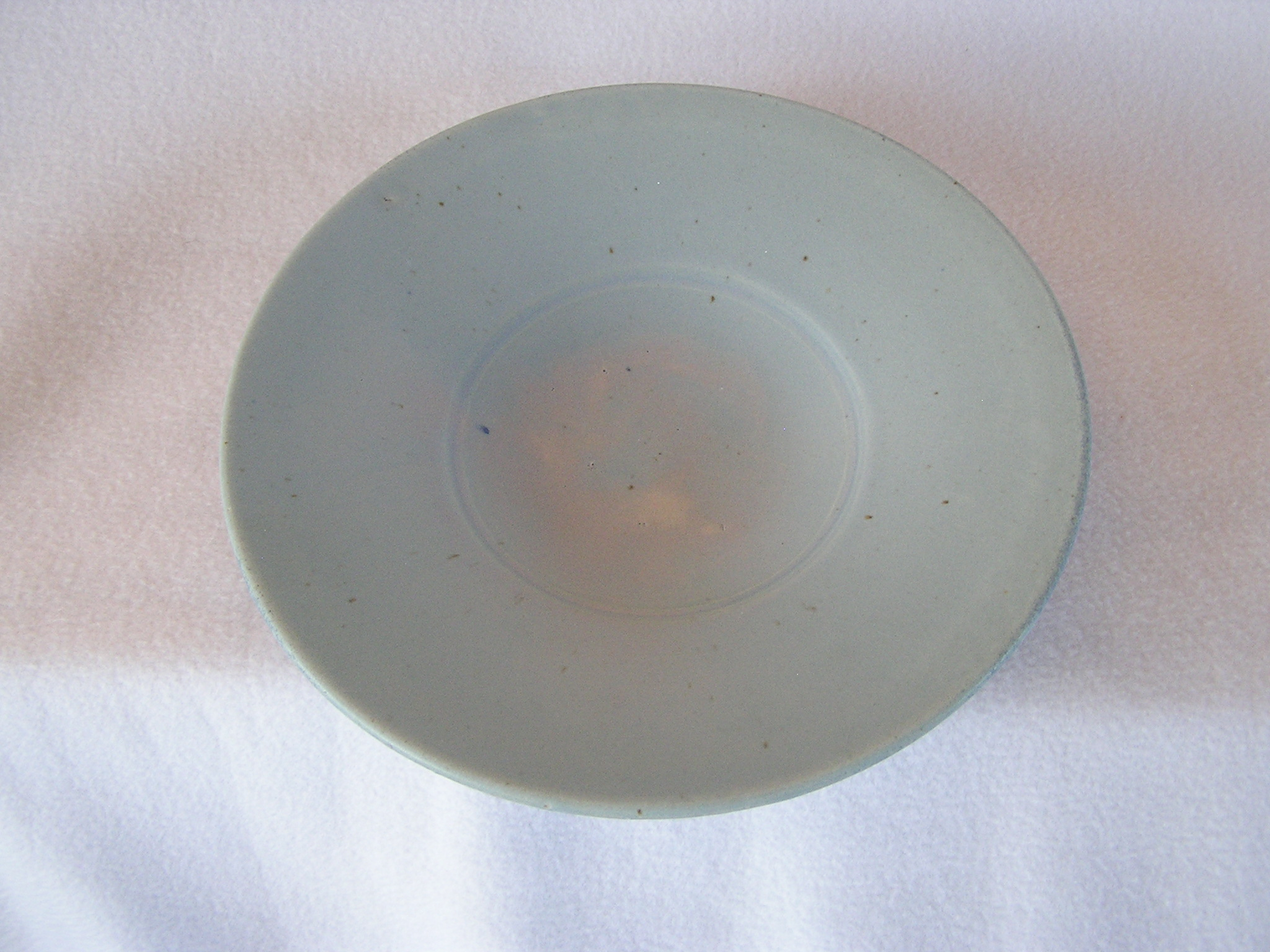 Dish- 10 in Shallow Flared Rim Group A