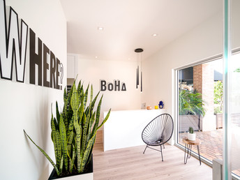 Why We All Need The BoHa Studio Right Now