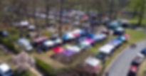 crofton festival.jpg