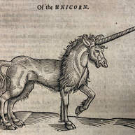 Bestiary of the Book