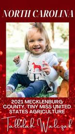 1 Mecklenburg.jpg