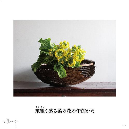 『3月(菜の花)』 味岡伸太郎