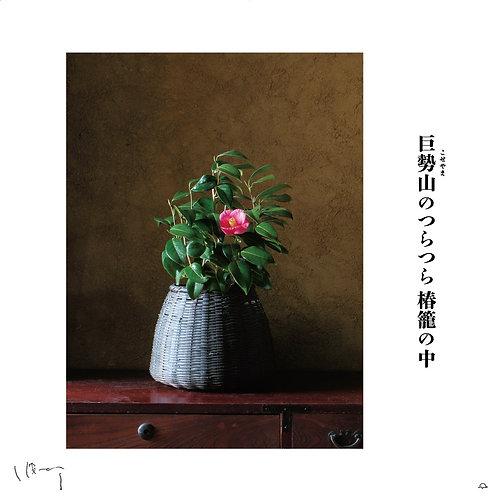 『12月(椿)』 味岡伸太郎