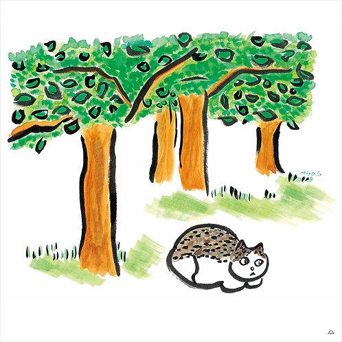 『緑樹』斉藤弥世