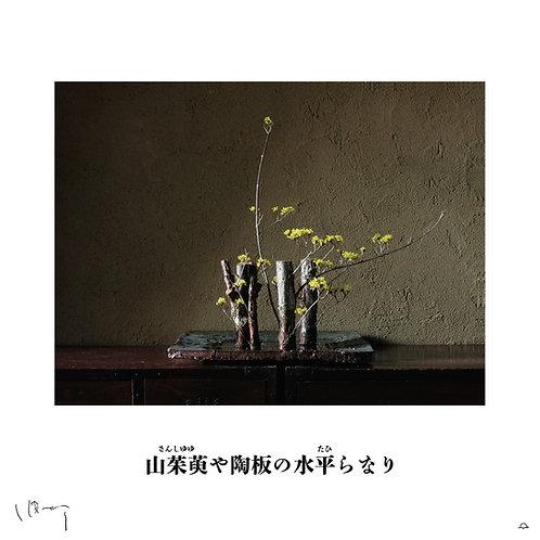 『2月(山茱萸)』 味岡伸太郎