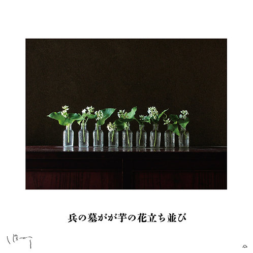 『8月(芋の花)』 味岡伸太郎