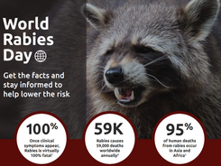 World Rabies Day campaign