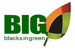 Blacks in Green Logo.png