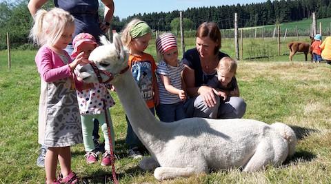 Besuch der Mutter-Kindgruppe bei unseren Alpakas