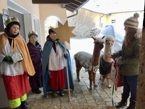 Sternsinger unterwegs mit unseren Alpakas
