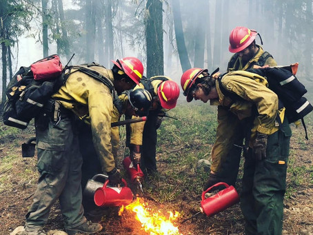 Inmates Risk Lives Fighting Wildfires and Have New Opportunities After Release