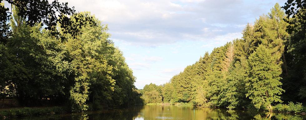 Blick über unseren See