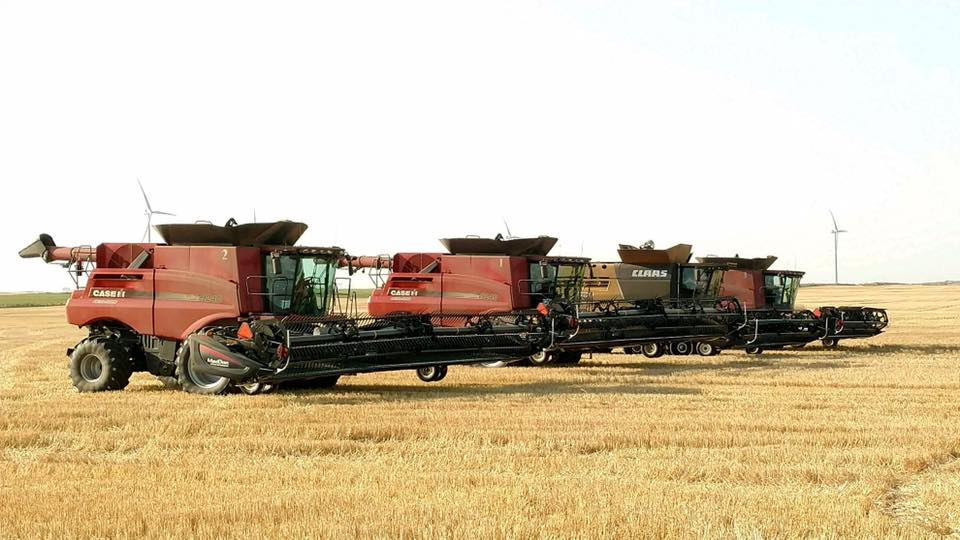 Cutting durum