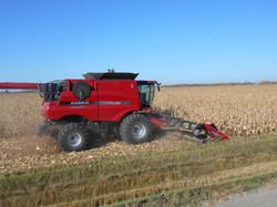 end of harvest 191