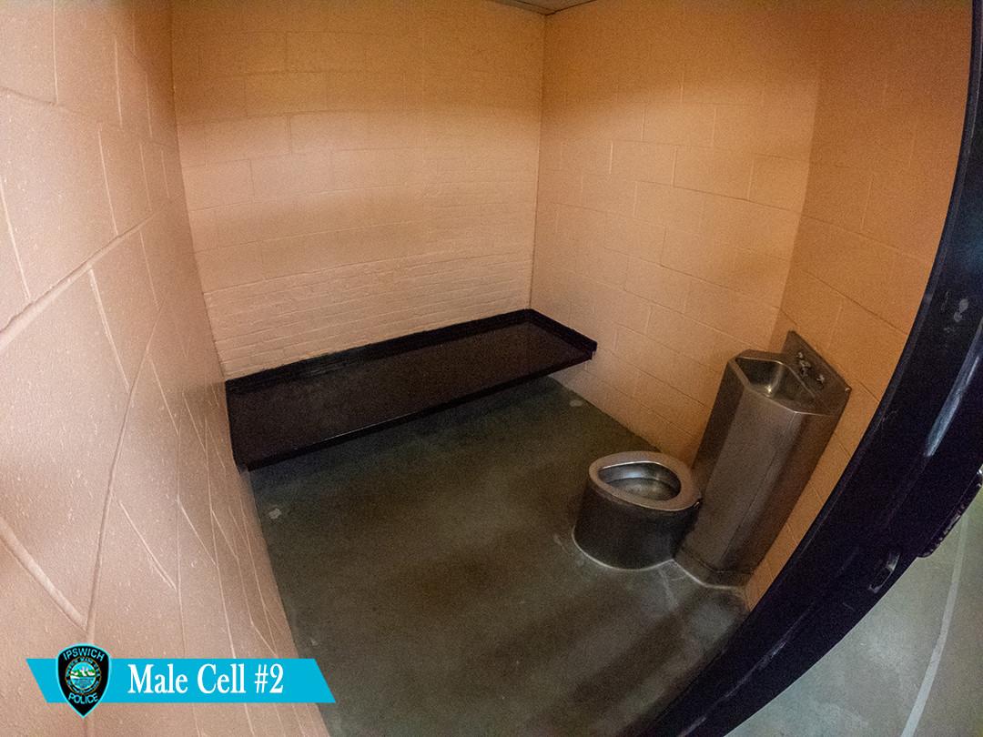 cell #2.jpg