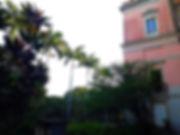 camila2.jpg