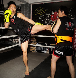 Muay Thai! Left Kick