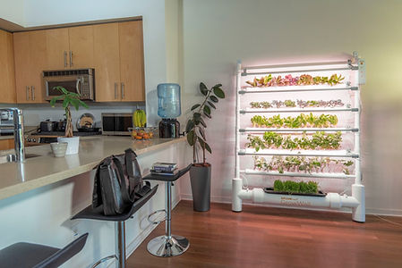 OPCOM-Farm-GrowWall-Lifestyle.JPG