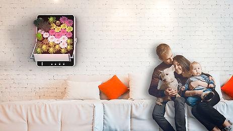 GrowFrame_Livingroom.jpg
