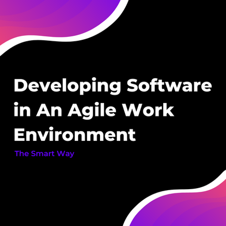 Developing Software in An Agile Work Environment