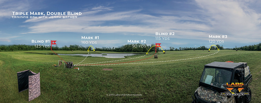 Perspective View of Hunting Dog Training Setup with Triple Mark and A Double Blind