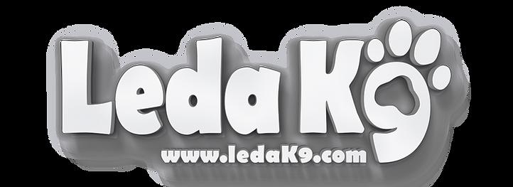 Leda_3D Text.png