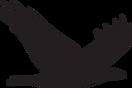Shidonna Raven Logo Bird 312.png