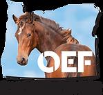 2018-OEF-LOGO-FINAL-4Digital.png