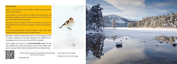 Winter Loch Card