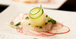 Crudo with Cucumber