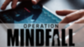 mindfall-pour-site.png